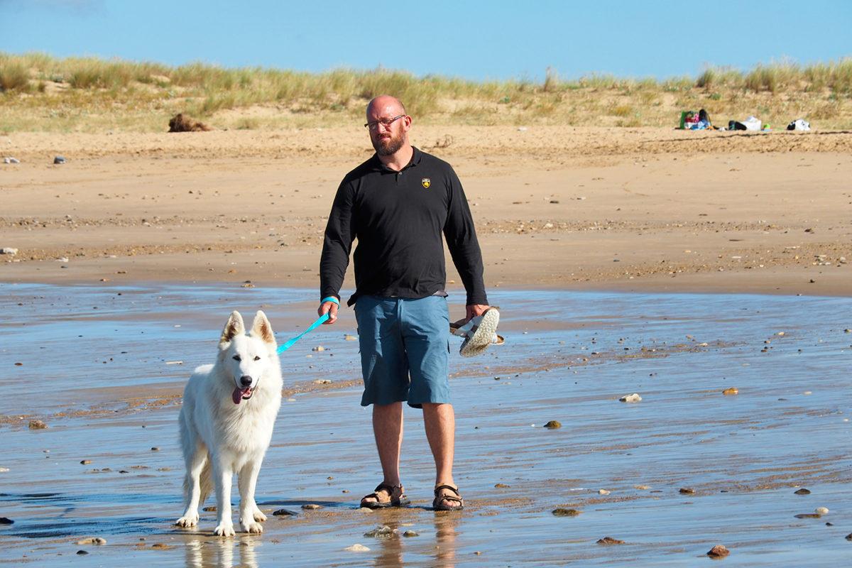 Les chiens profitent aussi de la plage