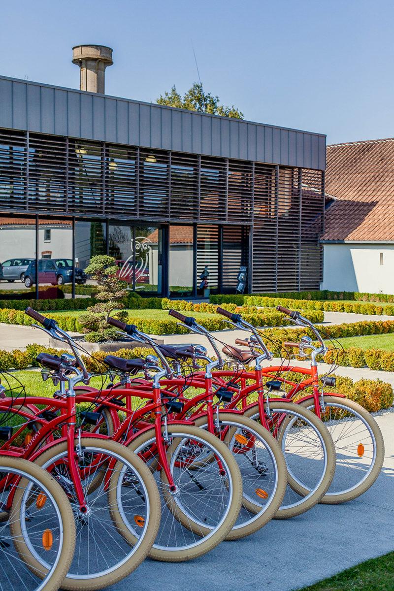 Découverte du vignoble Mourat à vélo
